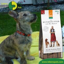 Defu Felderzeugnisse Bio Hundefutter Snack Pralinen Rind