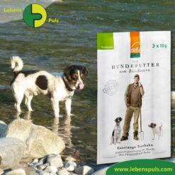 Defu Felderzeugnisse Bio Hundefutter Kaustange Truthahn