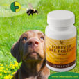 Forever Living Products Bee Pollen