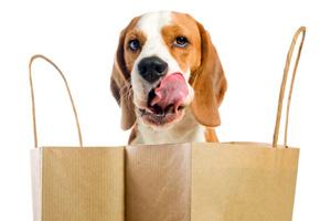 Hund mit Einkaufstüte 123rf