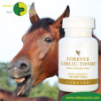 Forever Living Products Garlic Thyme