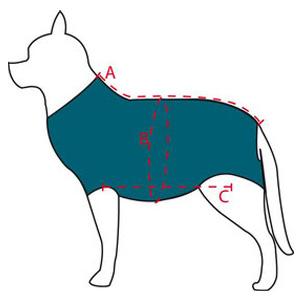 Groessenbestimmung Body Hund Katze