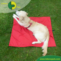 VetMedCare Tierbedarf Animal Pad 1