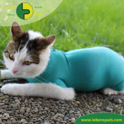VetMedCare Tierbedarf Cat Body 1