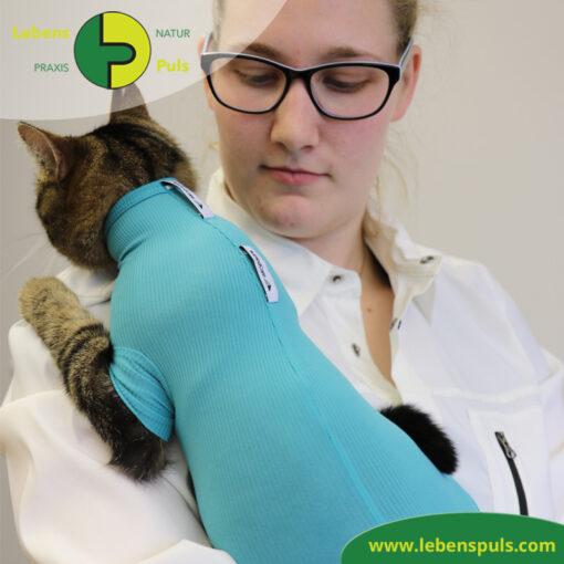 VetMedCare Tierbedarf Cat Body 2