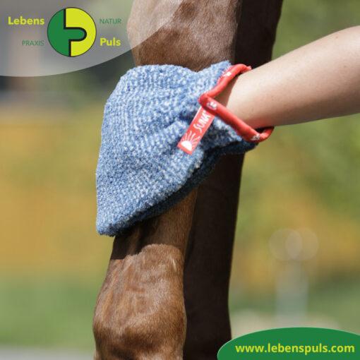 VetMedCare Tierbedarf Fellpflege Handschuh 3