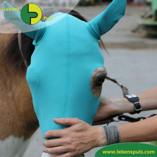 VetMedCare Tierbedarf Pferd Kopf Ohrenschutz ohne Augenausschnitt