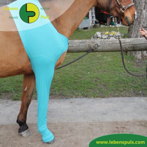 VetMedCare Tierbedarf Pferd Beinling