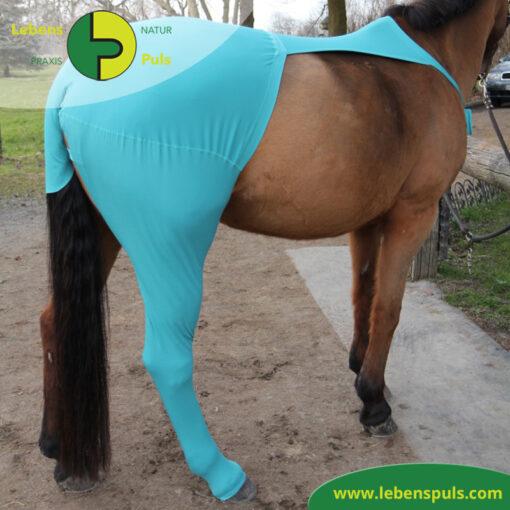 VetMedCare Tierbedarf Pferd Beinling 1