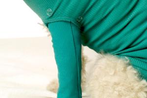 VetMedCare Tierbedarf Druckknöpfe klein für Safety Tubes Beinlinge 1