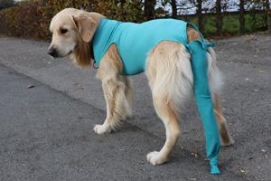 VetMedCare Tierbedarf ohne Druckknöpfe für Safety Tubes
