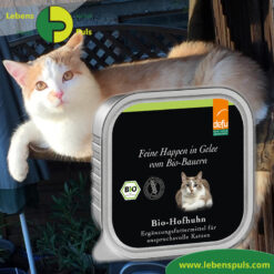 Defu Felderzeugnisse Bio Katzen Nassfutter Feine Happen in Gelee Hof Huhn