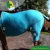 VetMedCare Tierbedarf Pferde Body mit Bein